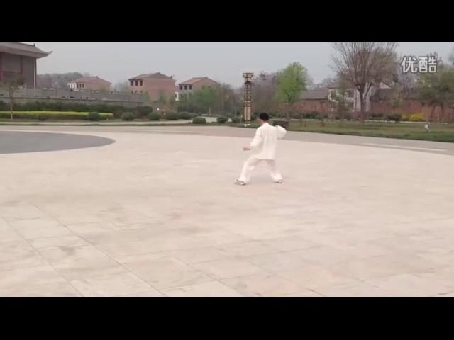 Chen Tian Qing Tai Chi style Chen Xiaojia Erlu [陈氏太极拳小架 Taijiquan style Chen]