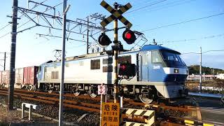 2018/01/06 JR貨物 新年初!!大谷川踏切から午前7時台の貨物列車3本