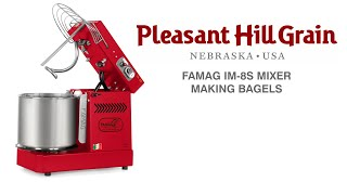 Famag mixer making bialy dough