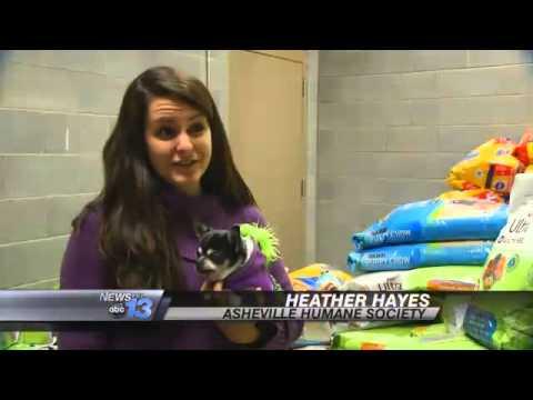 Animal Shelter Gets Surprise Donation