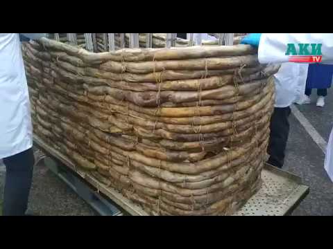 Бишкекте 1 тоннадан ашык бешбармак бышырып, 110 метр чучук жасашты