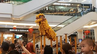 Barongsai 2019 | Amazing Lion Dance Performance to Celebrate Chinese New Year Mall Aeon JGC