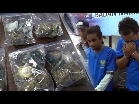 BNNP Bali Tangkap Pelaku Pengedar Ganja yang Dikirim Dari Jaringan Aceh Bali