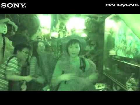 Sony X Ocean Park Halloween 2008 (18/10 11:26PM)