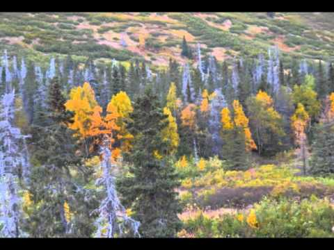 Hopes Hideaway- Hope Alaska