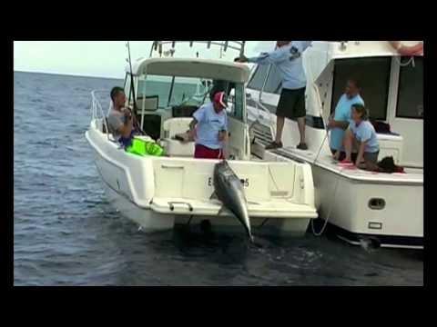 Pesca tonyina gegant 2011 cap de creus