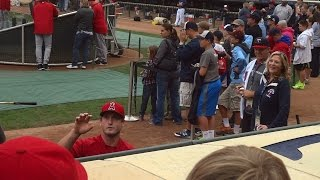 David Freese Signing Autographs - iFolloSports.com