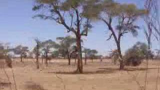 La piste de Thianga à Baba Garage -Sénégal