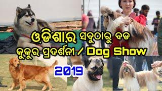ଓଡିଶାର ସବୁଠାରୁ ବଡ କୁକୁର ପ୍ରଦର୍ଶନୀ, Odisha Biggest Dog Show 2019 over 170 Dogs