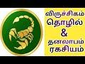 Viruchigam lagnam in Tamil ,job ,profession ,money gain secrets