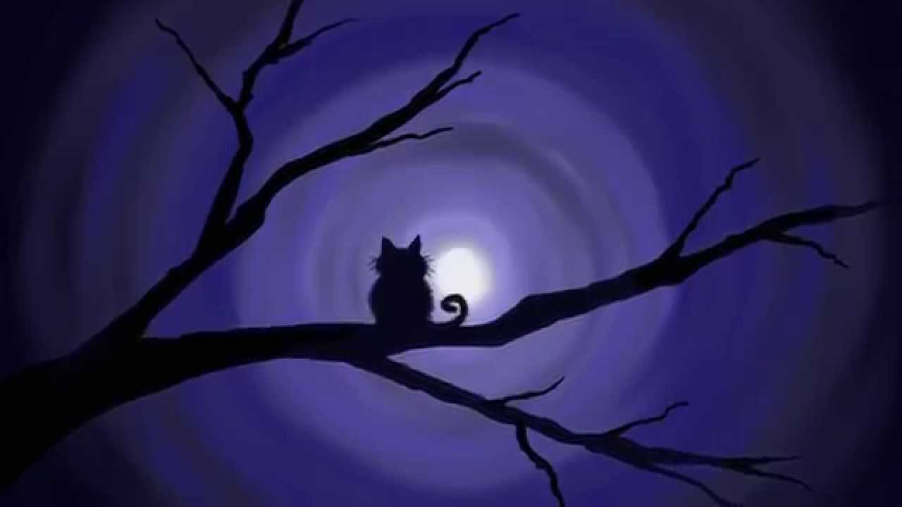 Digital Ipad Painting 13 Easy Silhouette Pawgustart Two Cat Silhouettes