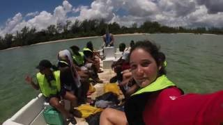 BNT EcoCamp Andros 2015