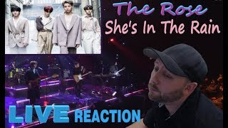 Baixar Metal Musician Reacts: The Rose (더 로즈) - She's In The Rain (Live) REACTION