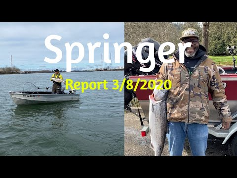 Willamette Fishing Report 3/8/2020.  Fishing Was Slow But A Few Skilled Anglers Landed Springers.