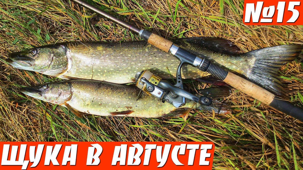 время рыбалки на спининг