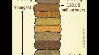 What Is The Difference Between The Relative And Absolute Ages Of Rocks?