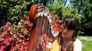 Bring me to life - EVANESCENCE - harpe/harp