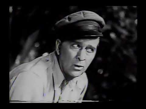 Idílio na Selva. 1938. Dublado