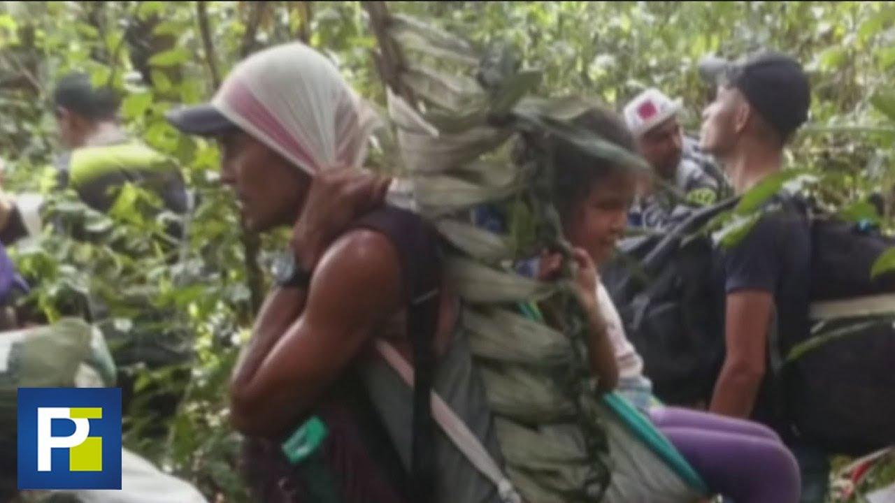 Hambre y peligro: la travesía de quienes pasan la selva del Amazonas en Perú para llegar a Colombia