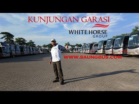 Ngintip Garasi Bus Pariwisata White Horse
