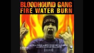 Bloodhound Gang - Fire Water Burn (Rudimental Jammy Mix)