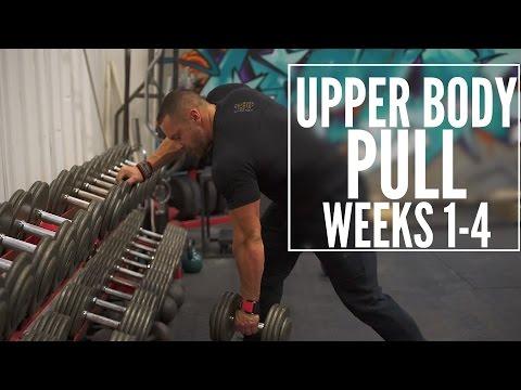 Train Like a Machine Weeks 1-4 Upper Body Pull | Tiger Fitness