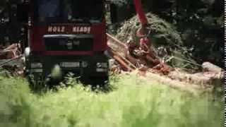 Holz Klade - Forstservice
