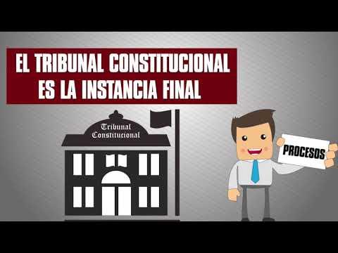 Conociendo el Tribunal Constitucional