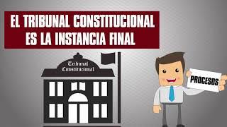 Conociendo el Tribunal Constitucional 2017 Video