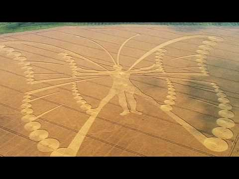 File:Chilbolton crop circle.png - Wikimedia Commons |Chilbolton Crop Circle Explanation