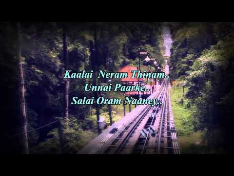 Naan Unnai Kathalithal Lyrics Video