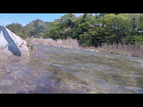 【栃木】鬼怒川水中カメラ