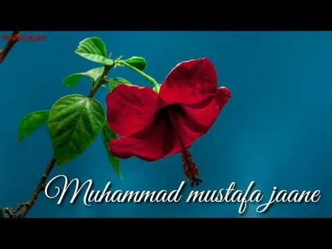 Khuda Ki Azmatain Bolo Marhaba || Islamic WhatsApp Status || Pyara Islam