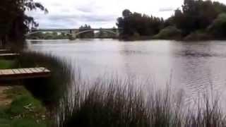 Río Guadiana zona Puente de Lobón