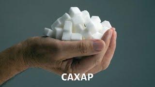 Еда. Правильное питание. Сахар | Телеканал «Доктор»