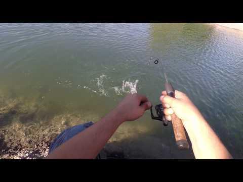 Having fun and fishing at NMSU Alumni pond.