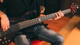 Бас гитара первый уровень обучения видео презентация