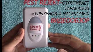 ОБЗОР  Pest Reject - отпугиватель тараканов, грызунов и насекомых