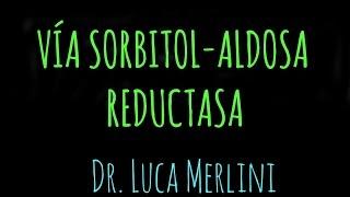 Vía Sorbitol-Aldosa Reductasa (Poliol)