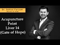 Acupuncture Point Discussion Liver 14 - Gate of Hope