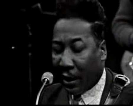 Muddy Waters & James Cotton  You Cant Loose What