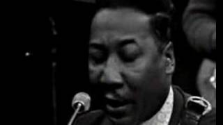 Muddy Waters & James Cotton - You Can