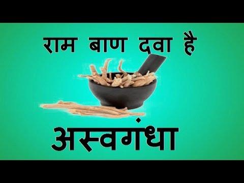 Ramban Dava hai Ashwagandha || Ashwagandha || ashwagandha organic | ashwagandha where to buy