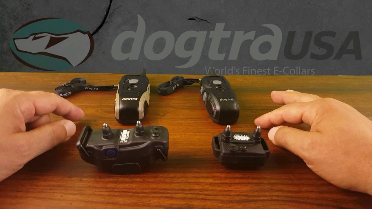 Dogtra 1900s Vs 280c E Collar Comparison Dogtrausa Com