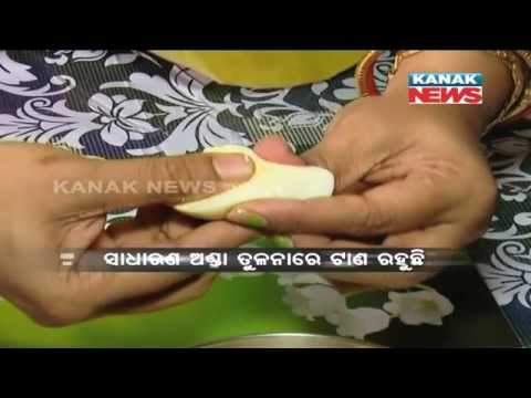 Special Report: Fake Egg In Odisha Market