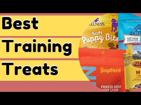 Best Dog Training Treats For Better Results