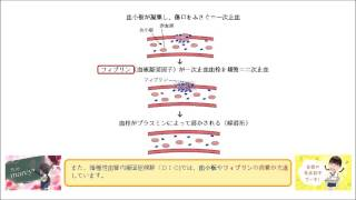 播種性血管内凝固症候群(DIC)では、 線溶系が亢進する。 (○or×)