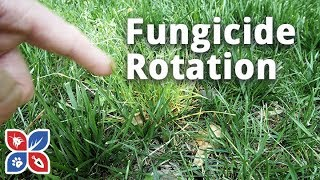 Do My Own Lawn Care  -  Lawn Fungicide Rotation Applications