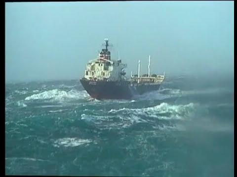 Chasseur de tempête - Thalassa Documentaire