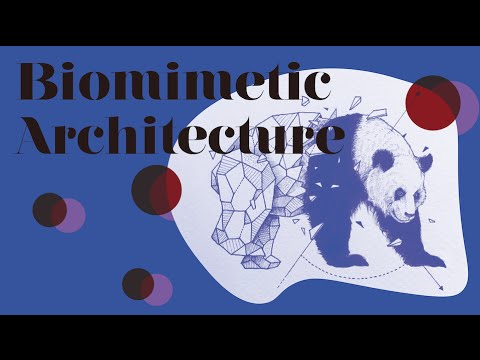 Kaleidoscope | Biomimetic Architecture